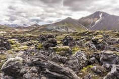 In Landmannalaugar kann das isländische Hochland bei einer Tagestour von Reykjavik aus erreicht werden. Echtes Island für Einsteiger.