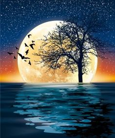 huge moon and a tree on the water Illustration , Beautiful Nature Pictures, Beautiful Nature Wallpaper, Beautiful Moon, Beautiful Landscapes, Beautiful Paintings Of Nature, Moon Painting, Moon Pictures, Moon Art, Painting Inspiration
