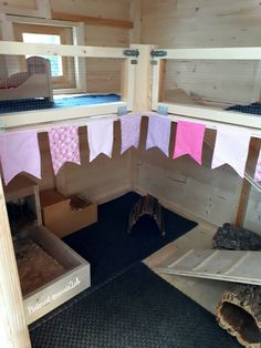 Rabbit Shed #rabbithouse #rabbithousing #rabbitcage #setup #bunnyideas #bunnylife #ahutchisnotenough #outdoor #rabbitshed #shedconversion #rabbitenrichment #cagefree