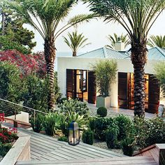 Juxtapose the look of stylish palm trees and chic, sculpted boxwoods with looser plantings for a garden that's a study in contrasts. Outdoor lanterns make the space an irresistible cocktail party destination.