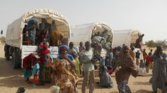 The Nigerian refugee crisis   ACTED