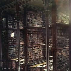 Book Aesthetic, Character Aesthetic, Aesthetic Pictures, Cincinnati Library, Beautiful Library, Dark Pictures, Slytherin Aesthetic, Dark Photography, Dark Places