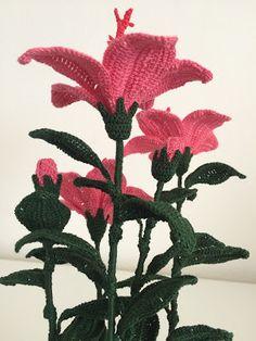 E una delle piante tropicali più affascinanti, con fiori di particolare bellezza. Elegante e delicato allo stesso tempo con la parti...