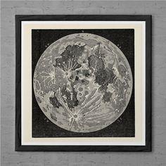 Ernst Haeckel Print Nautical Print Antique Nature Print Ribba Giclee Print Beach House Decor