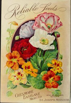 Chesmore-Eastlake Merc. Co. - Reliable seed 1910 catalog : field, flower and garden seeds