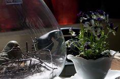 Stilleben in der Antiken Schatzkiste bei Bamberg. Glass Vase, Home Decor, Restoration, Bamberg, Antiquities, Decoration Home, Room Decor, Home Interior Design, Home Decoration