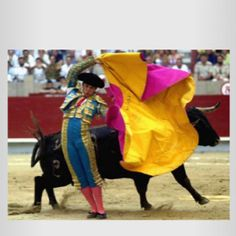 A guide on How To experience Spanish traditions in Barcelona. From bull-fighting to flamenco, learn everything about the main Spanish traditions ! Matador Costume, Charging Bull, Dangerous Sports, Spanish Culture, Foto Real, Popular Shows, Alicante, Thailand, People