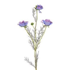 26% Off was $233.28, now is $172.80! Distinctive Designs DI-670-PW DIY Flower Perwinkle Cosmos Spray x 4 with 3 Flowers and 1 Bud - Pack of 24