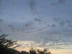 Sky 7:00p.m. Japan / Jun13,2012