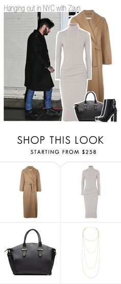 """Hanging out in NYC with Zayn"" by liamismybabe ❤ liked on Polyvore featuring 'S MaxMara, James Perse, Alexander McQueen, Jennifer Zeuner, Proenza Schouler, OneDirection and zaynmalik"