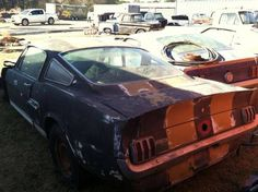 a bunch of old Fastback Mustang's sitting behind a lawnmower shop. One of the cars is a 1966 Shelby Ford Mustang Shelby Cobra, Shelby Car, Bicicletas Raleigh, Wrecking Yards, Car Barn, Classic Mustang, Abandoned Cars, Abandoned Vehicles, Rusty Cars