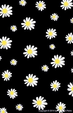 Flowers/ Black/ Flores/ fondo de pantalla/ wallpaper