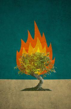 Burning Bush Inspiration