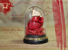 Anatomical Heart in Dome Conquered Heart Valentines Gift Love Romantic Goth Victorian Dollhouse Miniature $15.50