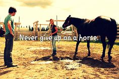 ~Never give up on a horse~