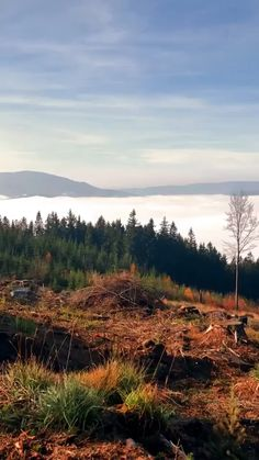 Time Lapse view of the clouds from on top of the mountain. Forest Photography, Landscape Photography, Art Photography, Scenery Wallpaper, Sad Wallpaper, Sky Aesthetic, Aesthetic Videos, Islamic Wallpaper Iphone, Photos Tumblr