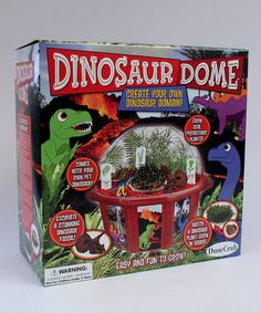 Take a look at this Dinosaur Dome Plant Kit by DuneCraft on #zulily today! $15 !!