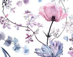 """다음 @Behance 프로젝트 확인: """"Transparent flowers"""" https://www.behance.net/gallery/55941843/Transparent-flowers"""