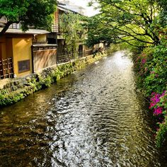 Shirakawa, Gion / 祇園・白川 | Flickr - Photo Sharing!