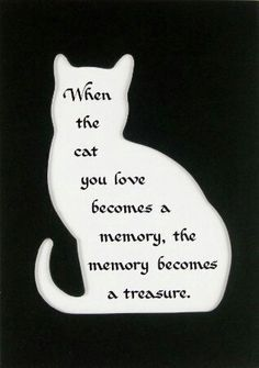Image result for loss of pet cat poem