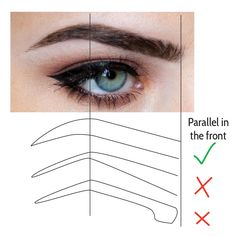 Quick tip with brows!! have the front of your brows parallel!