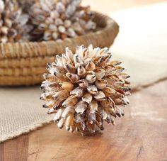 seashells-and-sealife-natural-shells-4inch Brown Natural Shell Ball