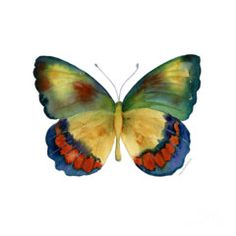 Print featuring the painting 67 Bagoe Butterfly by Amy Kirkpatrick