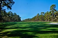 1455 Lisbon Court, Pebble Beach, CA 93953 — POPPY 2 - LOT 10 :: The crown jewel of Poppy 2 is this lot adjacent to the 4th green with premier size, arcing golf course frontage and views down the long 4th hole.