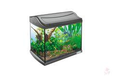 Tetra AquaArt LED Shrimps Aquarium-Komplett-Set 20L