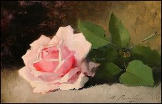 A PINK ROSE ON A TABLE -- Marie Lucie Cornélius, b.1850, d.1915, French painter.