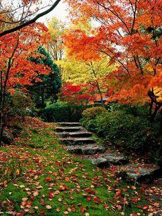 Hillside garden in autumn -Landscaping on a slope - How to make a beautiful hillside garden