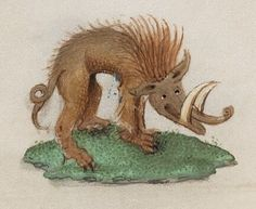 Rainbow coloured beasts from 15th century Book of Hours   The Public Domain Review...skinny-pig with very long tusks...