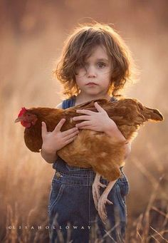 I caught another wayward chicken.too chicken Animals For Kids, Farm Animals, Animals And Pets, Cute Animals, Funny Animals, Country Life, Country Girls, Country Charm, Country Living