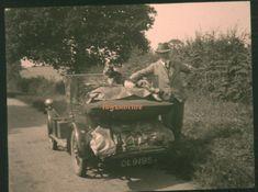 Car Road to Knockin with dog Owestry Shropshire Lantern Slide Transport Royal Mail, United Kingdom, Lanterns, Transportation, Dogs, Movie Posters, Ebay, Pet Dogs, Film Poster