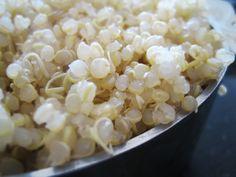 Lentil & Quinoa Breakfast Patties: quinoa