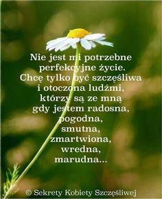 Good Sentences, Motto, Positive Quotes, Texts, Pray, Positivity, Relationship, Humor, Life