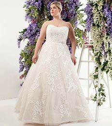 Callista Bride plus size wedding dresses