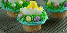 Chick and Egg Cupcake