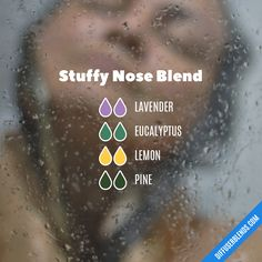 Stuffy Nose Blend — Essential Oil Diffuser Blend