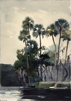 Winslow Homer (American, 1836–1910). Homosassa River, 1904. Watercolor with additions of gum over graphite on cream, moderately thick, moderately textured wove paper. Brooklyn Museum, Museum Collection Fund and Special Subscription
