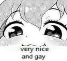 Lol Memes, Cute Memes, Stupid Memes, Funny Memes, Funny Reaction Pictures, Funny Pictures, Anime Expressions, Funny Anime Pics, Wholesome Memes