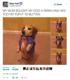 50 Pictures That Will Bring You The Happiness You Deserve