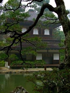 #Japan ginkokuji
