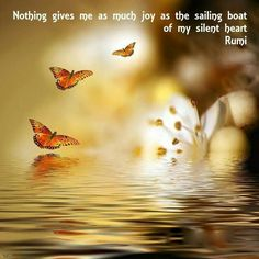Nothing gives me as much joy as the sailing boat of my silent heart. Rumi