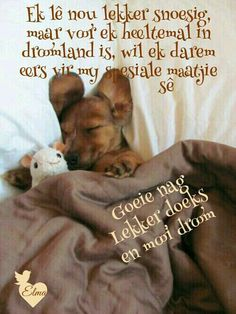 Boodskappe Good Night Sleep Tight, Good Morning Good Night, Good Night Quotes, Night Wishes, Day Wishes, Positive Thoughts, Positive Quotes, Greetings For The Day, Me Quotes