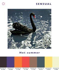 Trends Spring/Summer 2014