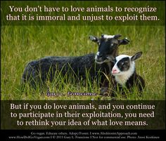 You don't have to love animals to recognize that it's immoral and unjust to exploit them. But if you do love animals and you continue to participate in their exploitation, you need to rethink your idea of what love means....Gary Francione