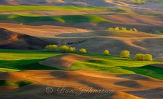 don johnston.Steptoe Butte