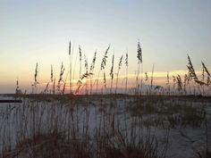 Gulf State Park in Gulf Shores, AL