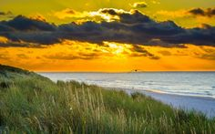 Sunset Glow on the Beach Landscape Background